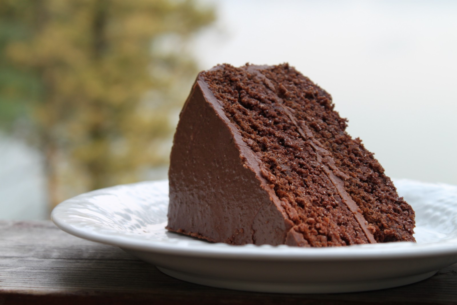 Megan Helsby's Milk-free Chocolate Cake