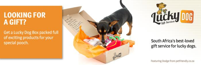 Lucky Dog Box Review